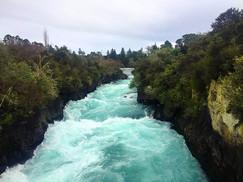 Let's go South Day 4 - Rotorua & Wellington