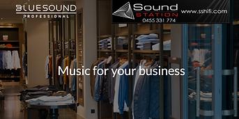 Bluespound Professional Music 4 Business.png