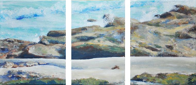 Silent Breeze Wild Coast Deborah Kresseb