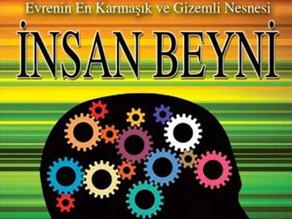 İnsan Beyni – Robert Winston