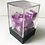 Thumbnail: Acrylic Box for RPG Dice (MSRP $9)