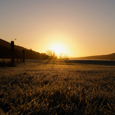 Scottish Mornings