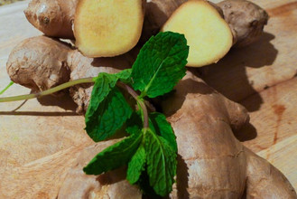 Ginger – The Almighty root