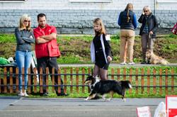 first dog show 9 months