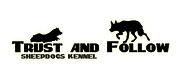 Trust and follow kennel border collie shetland sheepdog