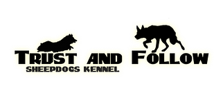 Trust and follow kennel border collie shetland sheepdog