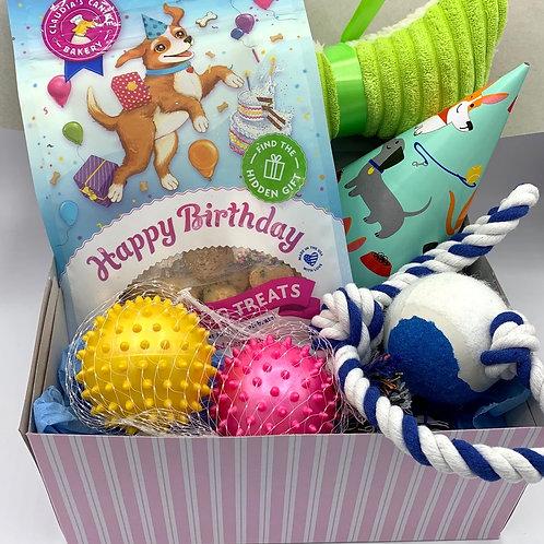 Dog Birthday/Gotcha Day Gift Box