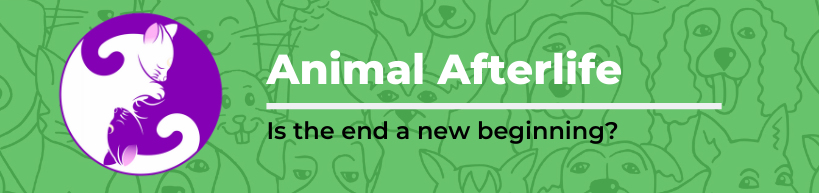 Animal Afterlife
