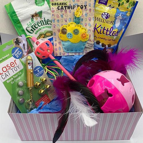 Cat Birthday/Gotcha Day Gift Box