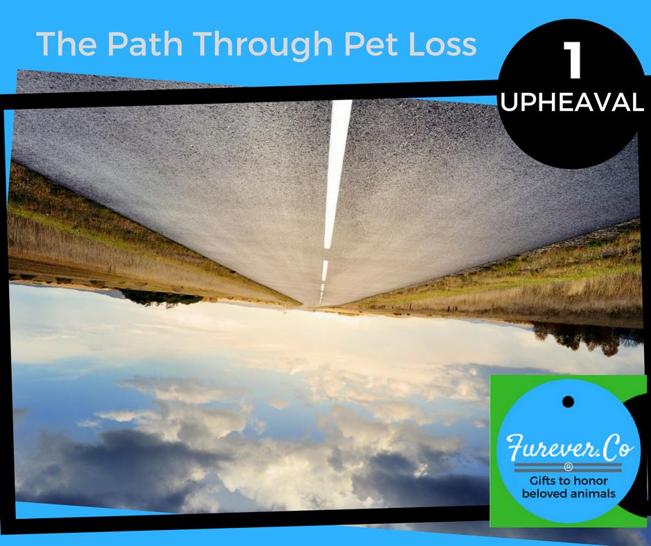 The path through pet loss 1