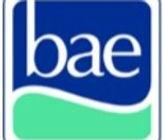 BAE logo_edited_edited.jpg