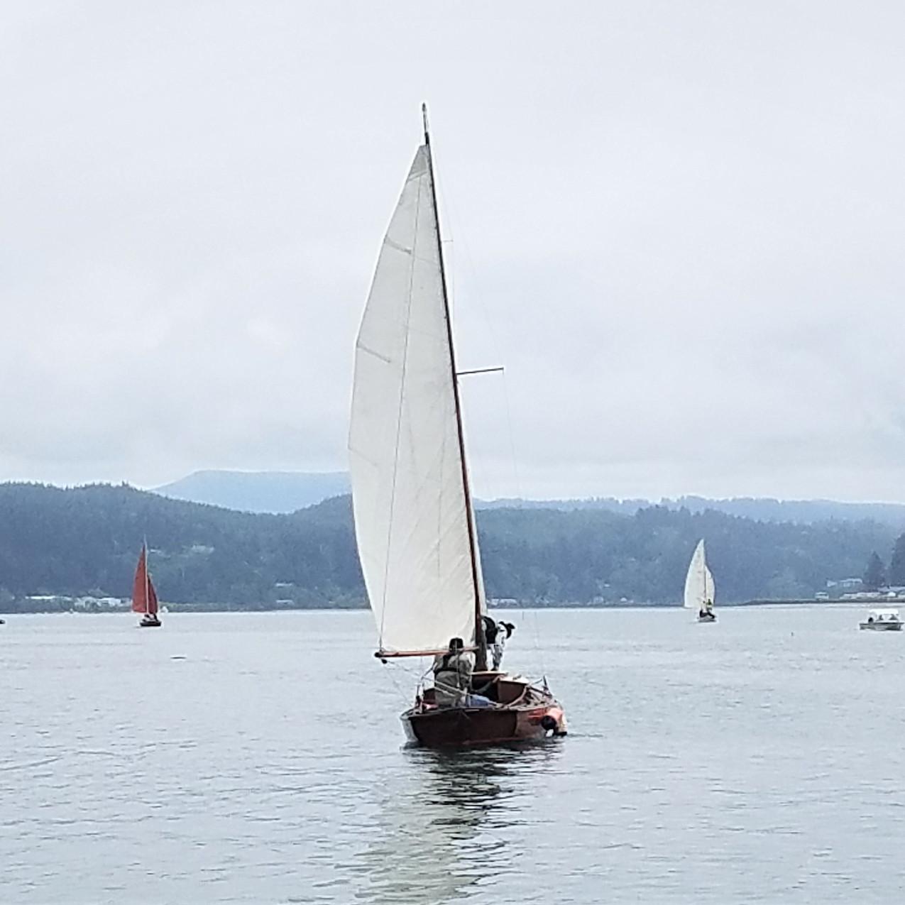 Teak Lady Sail