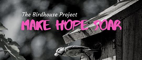 Make hope soar (1).png
