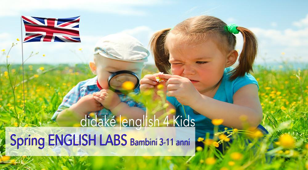 Spring English Labs