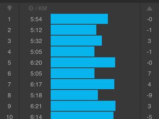 Begeleiding en training Marathon
