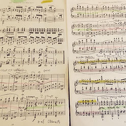 Beethoven annotated score image.jpg