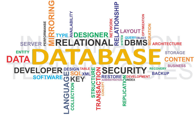 Computer Services - Database Design and Integration