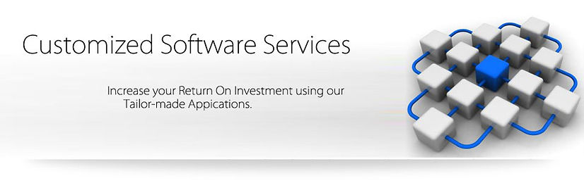 Computer Services - Customized Software Services