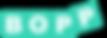Logo Bopp AG