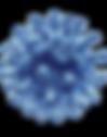 coronavirus_PNG9.png