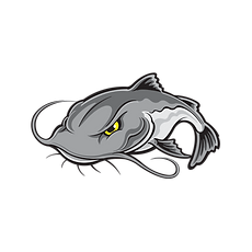 catfish-drawing-step-by-3.png