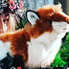 Meet the fox!