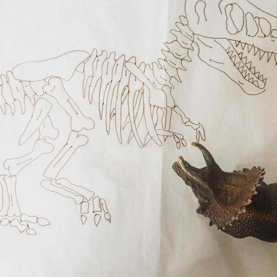 Dinosaur of the museum - Process