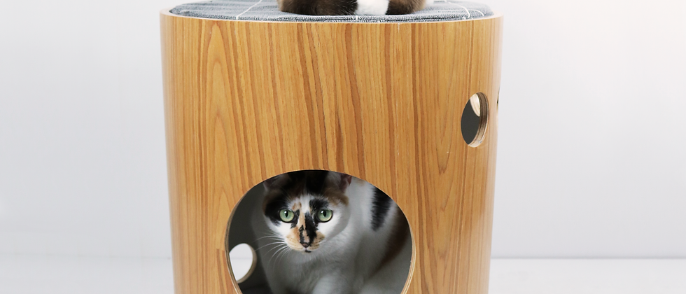 caminha nordic wood cat