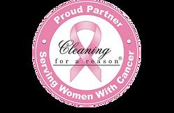 CleaningForAReason.png