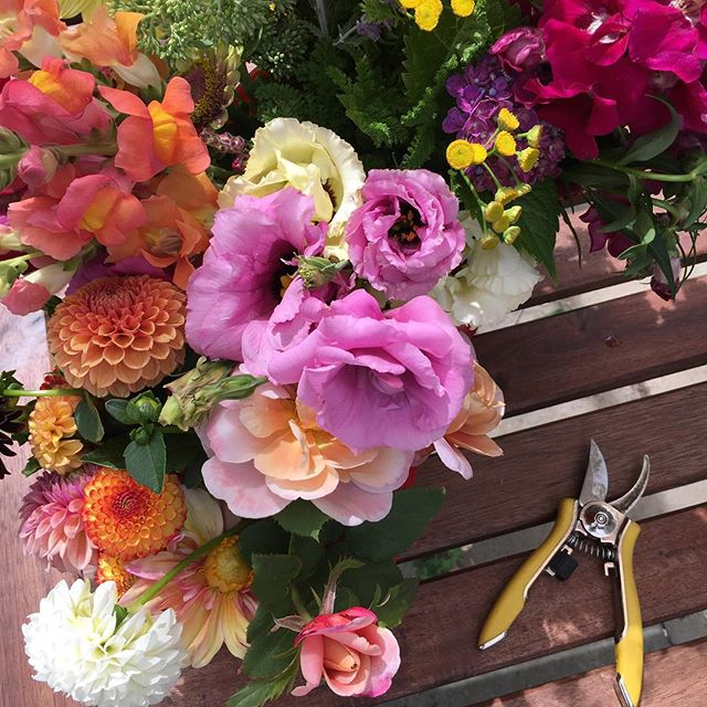 This morning; headed to the #flowerstand if I can find a few minutes before heading in to my day job