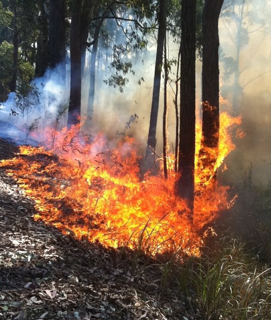 Bushfire Planning