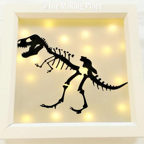 Fossil Lightbox