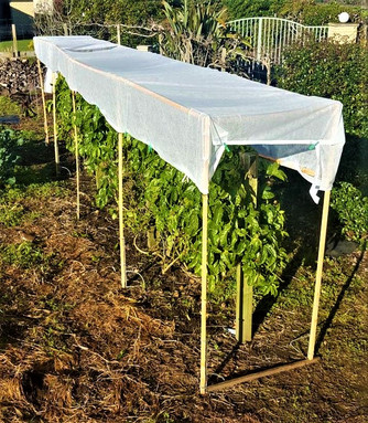 EASY STAKE with shade cloth solution