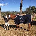 Lauren Page with horse.jpg