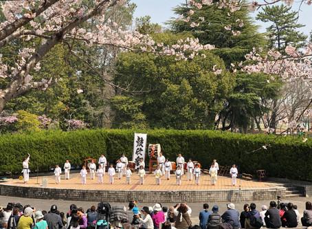 お花見演武 @日岡山公園 2019/04/07