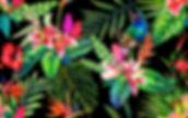 1-birds of paradise print.jpg