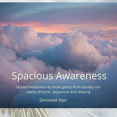 Spacious Awareness Meditation
