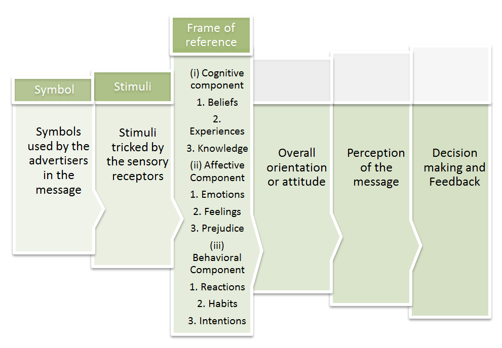 Information flow through frame of reference , Perception