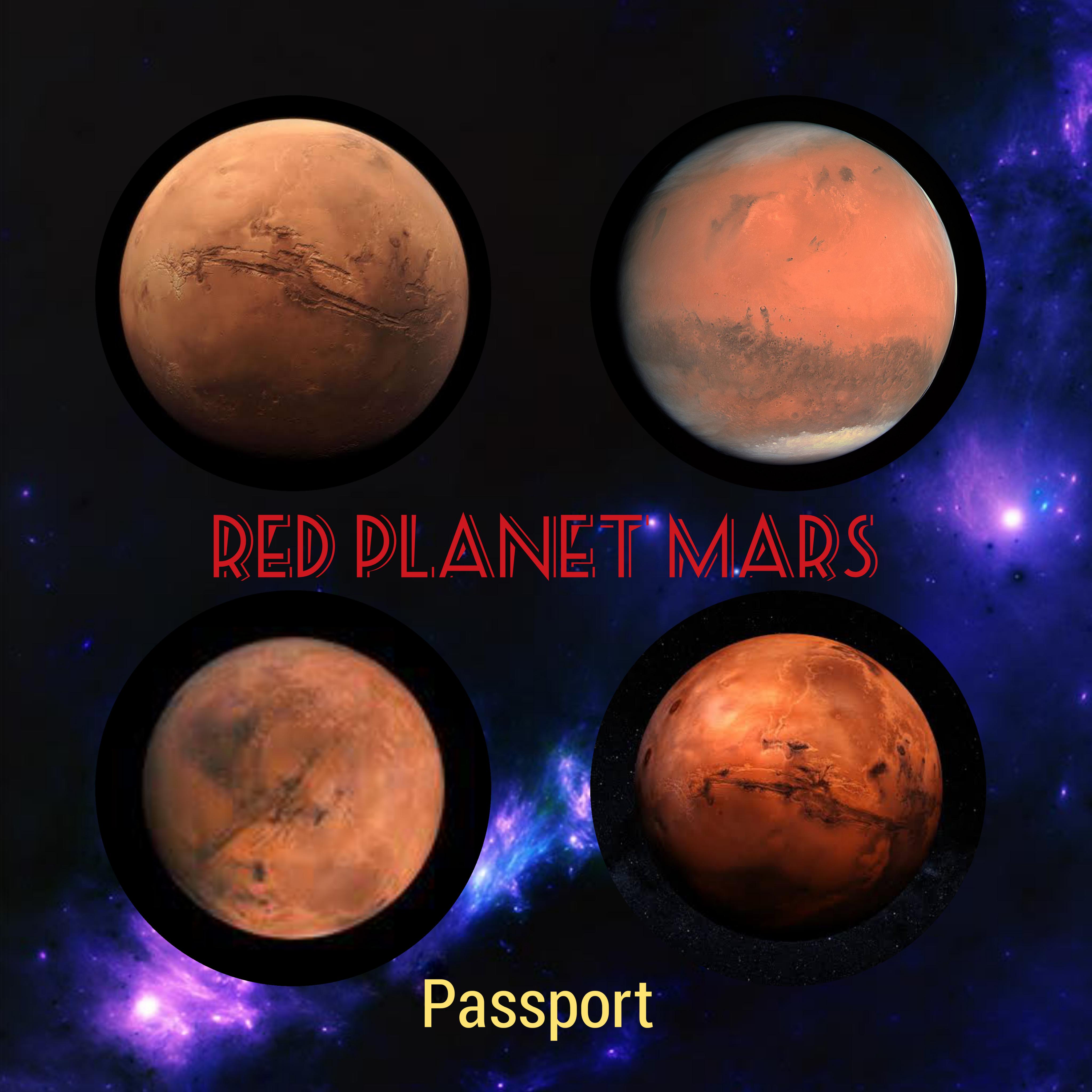 Red Planet Mars Passport - Meera Rajagop