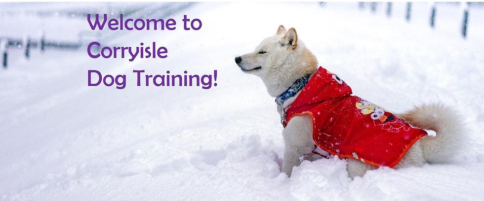 Corryisle Dog Training Fife 2021.jpg