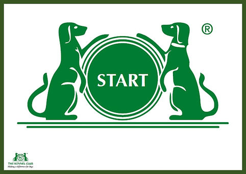 Online Rally Course - Corryisle Dog Trai