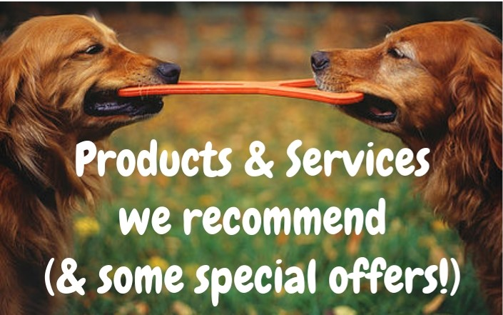 Products & Services we recommend