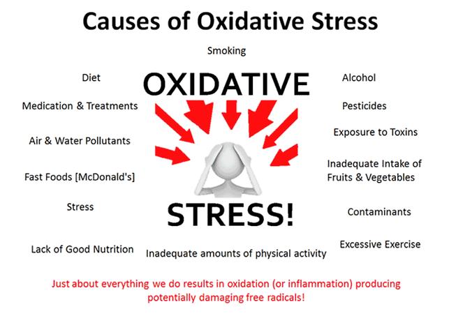 Oxidative Stress image 2.png