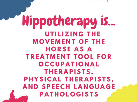 hippotherapy 1.jpg