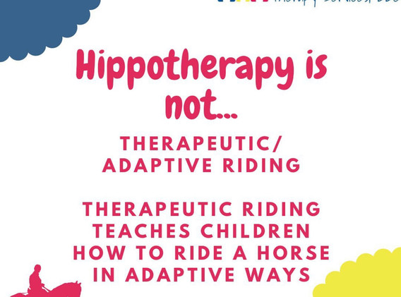 hippotherapy not.jpg