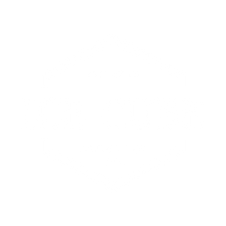 LOGO ICE CUBE