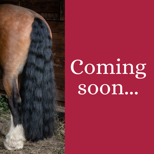 Dave the horse's tail next to the words 'coming soon'
