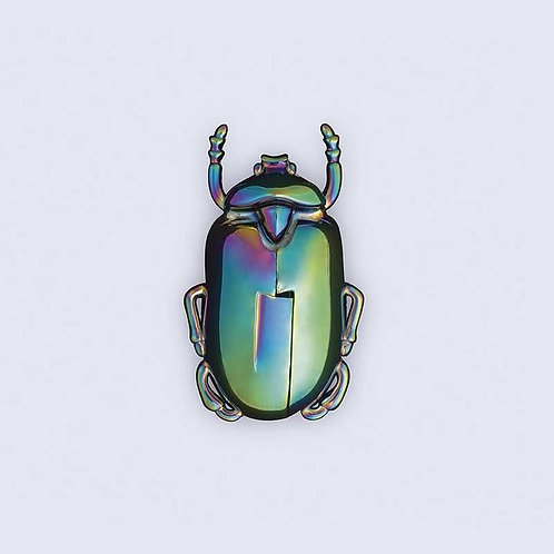 Insecte ouvre bouteille irridescent