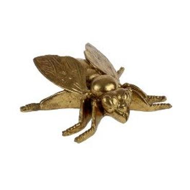 Insecte Deco Doré