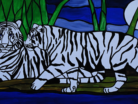 Two blue eyed tigers